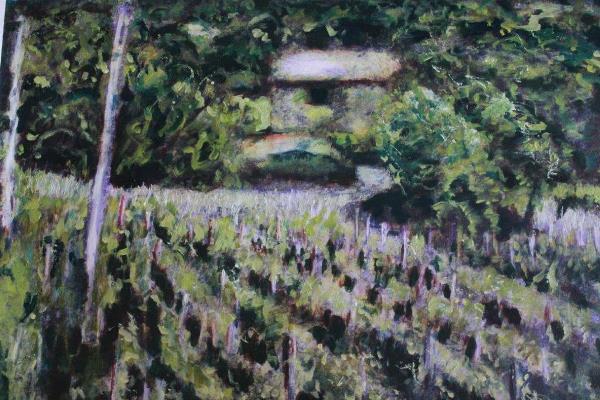 Vineyard in Tuscany, Acrylics £695 600x400